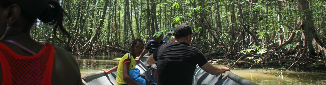 Bootsfahrt in den Mangroven
