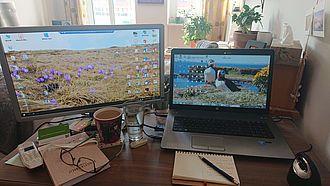Schreibtisch von Mariya Damyanova