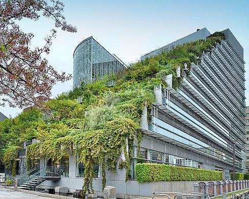 Das von Emilio Ambasz erbaute ACROS Gebäude im japanischen Fukuoka