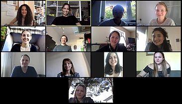 Das DPWK-Team in der Videokonferenz