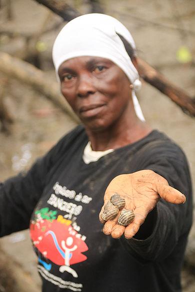 Muschelsammlerin hält Piangua-Muscheln in die Kamera