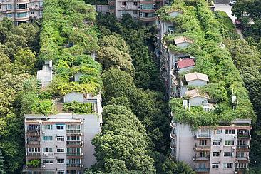 Begrünte Gebäude in der chinesischen Stadt Chengdu