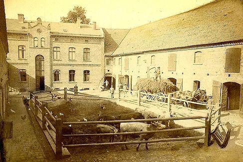 Der Lutherhof um 1900